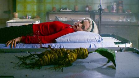 觀賞第 19 章:風茄。第 2 季第 8 集。